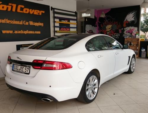 Jaguar ( Mat Beyaz )